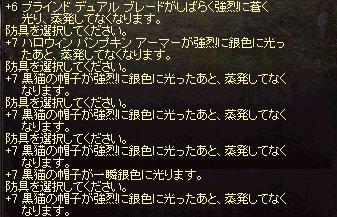 2010 1104 結果・・・.jpg